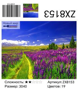 """АМ34 ZX8153 """"Дорога через лиловое поле"""", 30х40 см"""