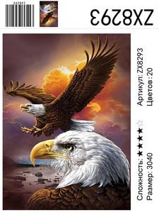 """АМ34 ZX8293 """"Два орлана"""", 30х40 см"""