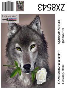"АМ34 ZX8543 ""Волчица с белой розой"", 30х40 см"