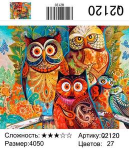 """РН Q2120 """"Три цветных совы"""", 40х50 см"""