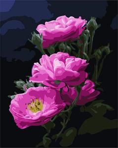"РН GX24788 ""Розовые цветы на черном фоне"", 40х50 см"