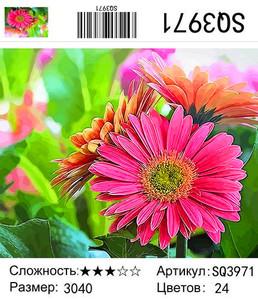 "РЗ SQ3971 ""Розовая гербера"", 30х40 см"