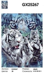 """РН GX25267 """"Белые тигры"""", 40х50 см"""